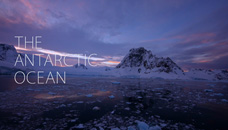 【4K】THE ANTARCTIC OCEAN